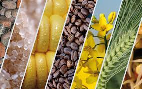 Rohstoffe, Investieren in Rohstoffe, Rohstoffinvestments, Investieren in Weizen